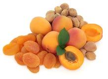 Frutta dell'albicocca Fotografie Stock Libere da Diritti