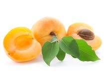 Frutta dell'albicocca isolata immagini stock libere da diritti