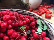 Frutta dell'autunno fotografia stock