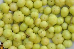 Frutta dell'uva spina della stella Fotografia Stock Libera da Diritti
