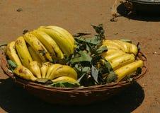 Frutta della banana Fotografia Stock Libera da Diritti