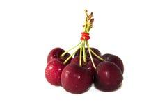Frutta della ciliegia con i fogli Immagini Stock