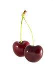 Frutta della ciliegia con i fogli fotografie stock libere da diritti