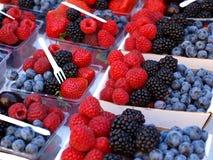 Frutta della foresta fotografie stock libere da diritti