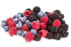 Frutta della foresta Immagini Stock Libere da Diritti