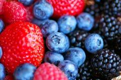 Frutta della foresta - bacche fotografia stock