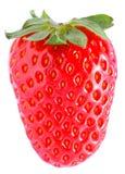 Frutta della fragola Immagini Stock Libere da Diritti
