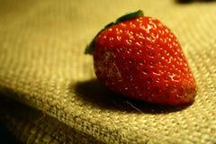 Frutta della fragola Fotografie Stock