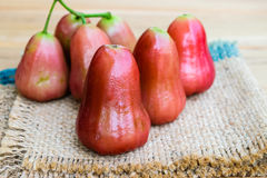 Frutta della melarosa Fotografia Stock Libera da Diritti