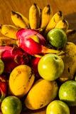 Frutta della miscela Fotografie Stock