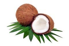 Frutta della noce di cocco su bianco Fotografia Stock Libera da Diritti