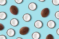 Frutta della noce di cocco su un fondo blu pastello Conce minimo di estate fotografia stock