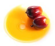 Frutta della palma da olio ed olio da cucina immagine stock