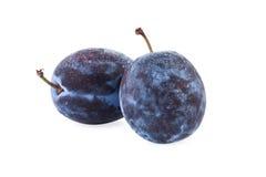 Frutta della prugna isolata su bianco Immagine Stock Libera da Diritti