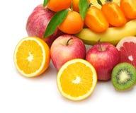 Frutta della raccolta Immagine Stock