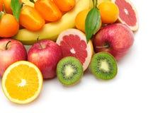 Frutta della raccolta Fotografie Stock Libere da Diritti