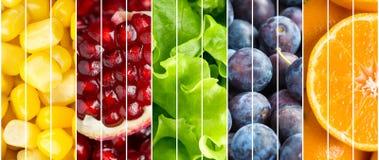 Frutta della raccolta e fondo delle verdure Immagini Stock Libere da Diritti