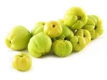 Frutta delle cotogne Immagine Stock Libera da Diritti
