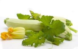 Frutta dello zucchino Fotografia Stock