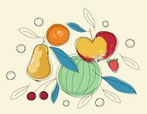 Frutta di abbozzo Immagine Stock