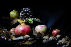 Frutta di autunno Immagini Stock Libere da Diritti