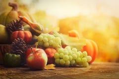 Frutta di autunno Fotografia Stock Libera da Diritti