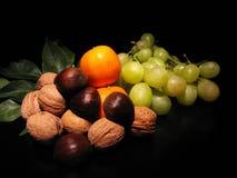 Frutta di autunno Fotografia Stock