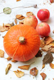 Frutta di autunno nel giardino Fotografia Stock Libera da Diritti