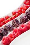 Frutta di bacca fresca immagini stock libere da diritti