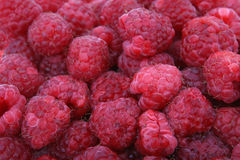 Frutta di bacca rossa fresca Immagini Stock