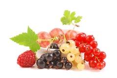 Frutta di bacche Immagine Stock Libera da Diritti