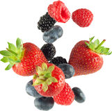 Frutta di caduta isolata Fotografie Stock Libere da Diritti