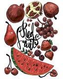 Frutta 2 di colore rosso illustrazione vettoriale