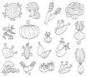 Frutta di Doodle, verdure Fotografia Stock Libera da Diritti