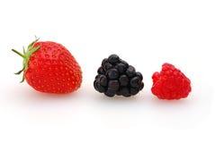 Frutta di estate Fotografia Stock Libera da Diritti