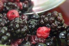 Frutta di estate - ciotola di bacche (macro) Immagine Stock