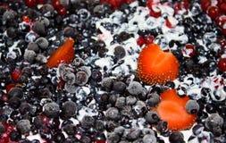 Frutta di Frosen sulla crostata Immagine Stock Libera da Diritti