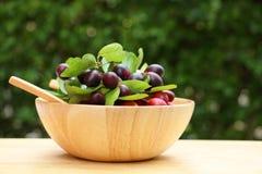 Frutta di Karonda in ciotola di legno Immagini Stock Libere da Diritti