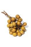 Frutta di Longan Fotografie Stock Libere da Diritti