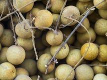 Frutta di Longan Fotografie Stock