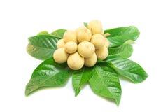 Frutta di Longkong (parasiticum di Lansium) su bianco Immagini Stock Libere da Diritti