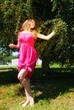 Frutta di raccolto della ragazza dall'albero di prugna Fotografie Stock Libere da Diritti