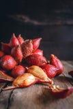 Frutta di Salak Immagine Stock Libera da Diritti