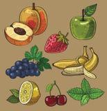Frutta disegnata a mano Immagini Stock Libere da Diritti