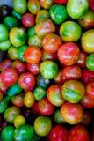 Frutta dolce immagine stock