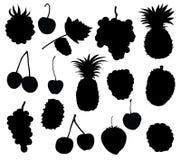 Frutta e bacca Fotografia Stock Libera da Diritti