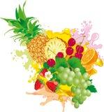 Frutta e bacca Fotografie Stock Libere da Diritti