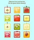Frutta e bacche differenti per l'elemento del blocchetto del gioco Immagini Stock Libere da Diritti