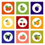 Frutta e Berry Icons rotondi su fondo variopinto Fotografia Stock Libera da Diritti