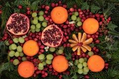 Frutta e flora di natale Fotografia Stock